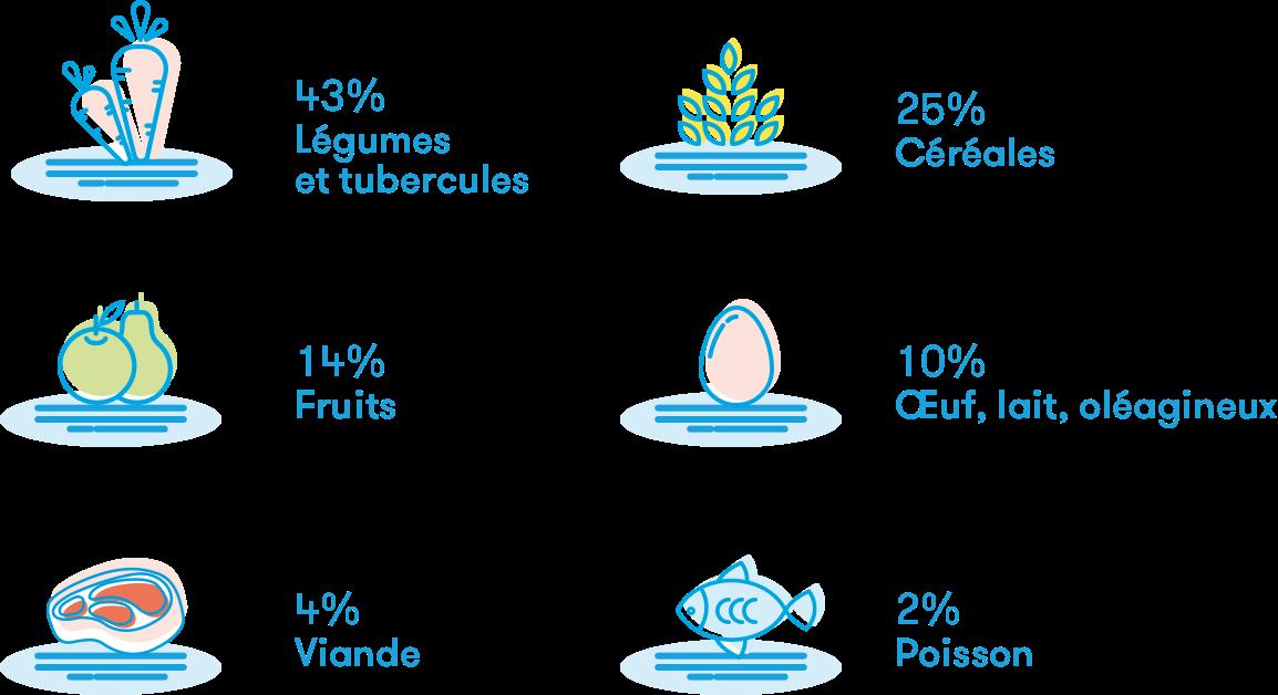 gaspillage alimentaire des fruits et légumes
