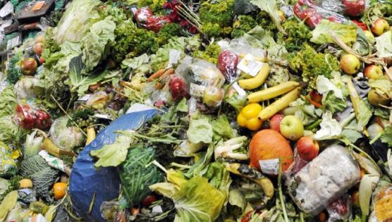 Industriels obligations anti-gaspillage